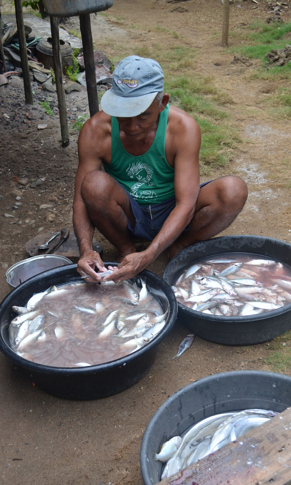 A fisher in Tinambac, Philippines cleans his catch.