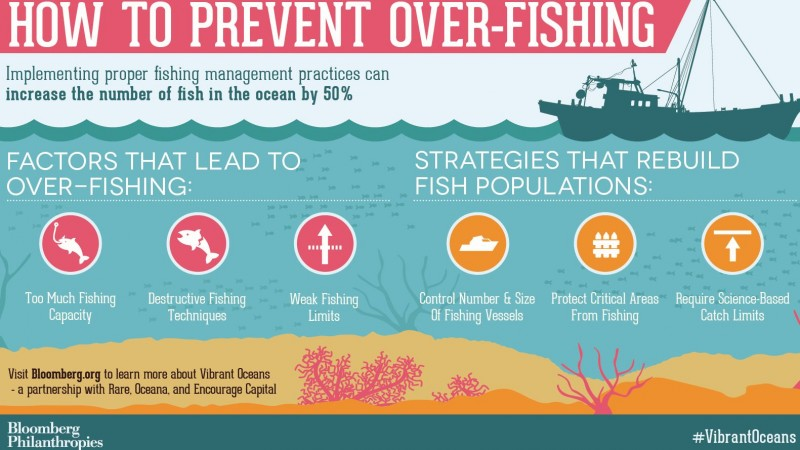 How to Prevent Over-Fishing