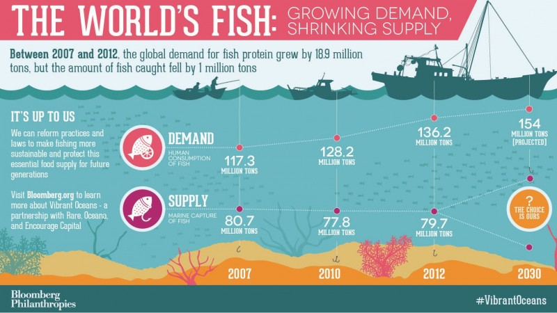 The World's Fish