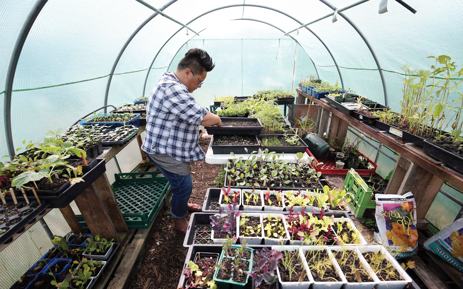 Seedlings grow in the Papatuanuku Kokiri Marae, a communal gathering place in Auckland, New Zealand, where people learn how to reduce waste and grow their own food. Auckland was recognized by C40 for its commitment to reducing landfill waste.