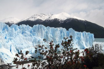 The glacier Perito Moreno floats in southern Patagonia, South America, on Tuesday, Nov. 4, 2008. The glacier advances at a rate of two meters (6.56 feet) a day. Photographer: Catherine Hickley/Bloomberg News